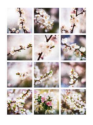 Collage Mysteries Of Spring Art Print by Alexander Senin