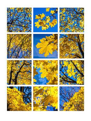 Collage October Blues Art Print by Alexander Senin