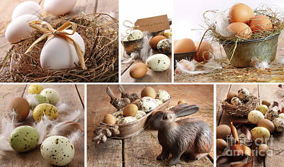 Photograph - Collage Of Assorted Brown Eggs Images For Easter by Sandra Cunningham