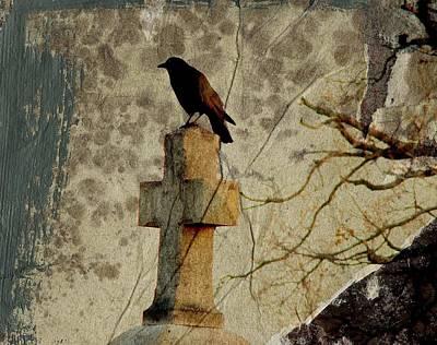 Collage Of Crow Art Print
