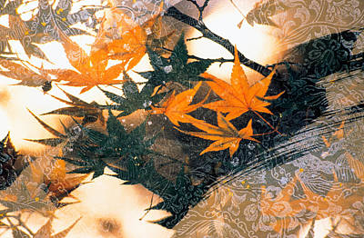 Abstract Flowers Images Photograph - Collage Of Green And Pale Orange by Panoramic Images