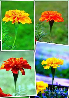 Collage Of Marigolds Art Print by Judy Palkimas