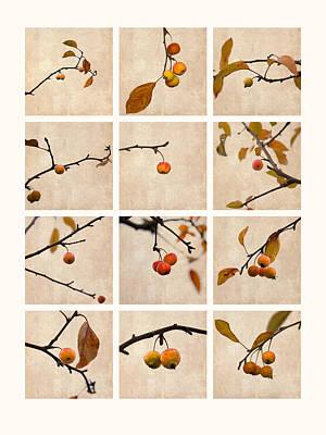 Collage Paradise Apple Art Print by Alexander Senin