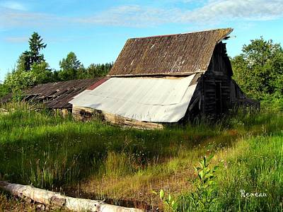 Photograph - Collapsible Old Barn by Sadie Reneau