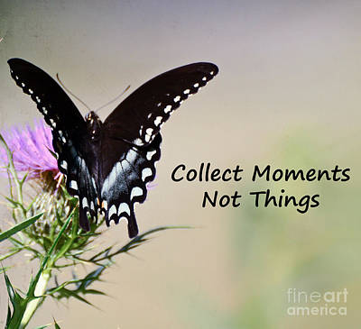 Photograph - Collect Moments by Kerri Farley
