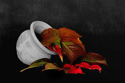 Photograph - Collecting The Autumn Colors by Marwan Khoury