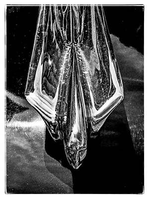 Photograph - Cadillac Collector Car Hood Ornament by Roxy Hurtubise
