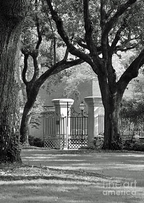 College Of Charleston Gate Art Print