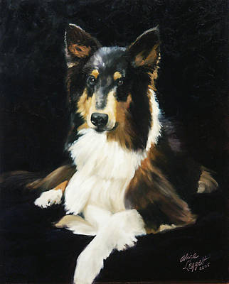 Dog Portrait Painting - Collie by Alice Leggett
