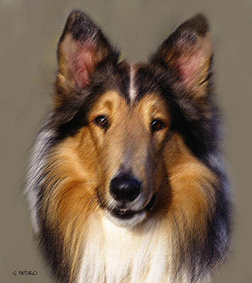 Painting - Collie In Pastel by George Pedro