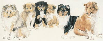 Collie Puppies Art Print