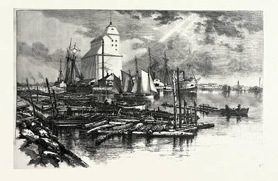 Collingwood Harbour, Canada Art Print by Canadian School