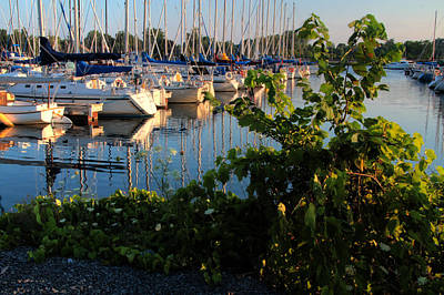 Photograph - Collins Bay Marina 2 by Jim Vance