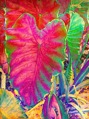 Colocasia Art Print by Denise Tomasura