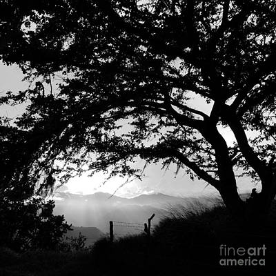 Photograph - Colombia-fineart-18 by Javier Ferrando