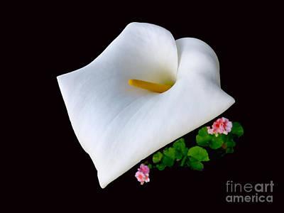 Colombian Calla Lily Art Print