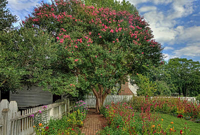 Photograph - Colonial Garden In Williamsburg by Jerry Gammon