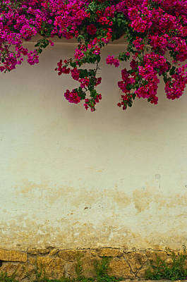 Colonial Wall With Flowers Art Print