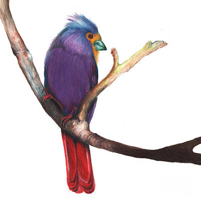 Drawing - Color Bird 7 by Anthony Burks Sr