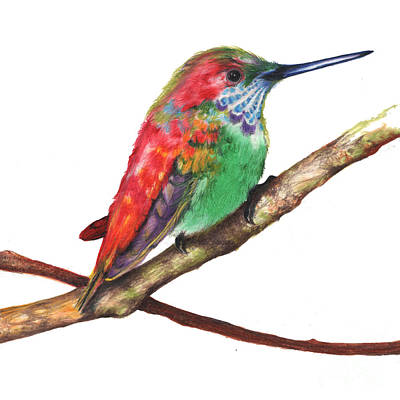 Color Bird 9 Art Print by Anthony Burks Sr