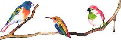 Mixed Media - Color Birds Study  4 by Anthony Burks Sr