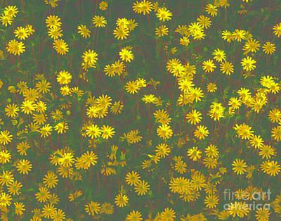 Color Flower Wall Art Print