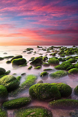 Color Harmony Art Print by Jorge Maia