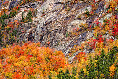 Photograph - Color In The Notch by Jeff Sinon