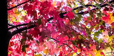 Kaleidoscope Photograph - Color My World by Karen Wiles