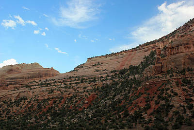 Photograph - Color Of Colorado National Monument by Mary Bedy