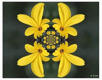 Photograph - Color Of Springtime by Davandra Cribbie