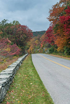 Photograph - Color On The Blue Ridge Parkway   Nc by Willie Harper