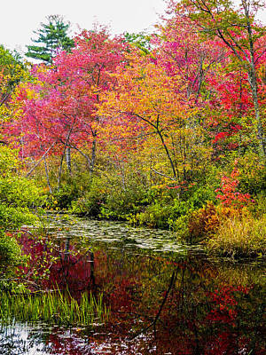 Color On The Water Art Print by Mike Ste Marie
