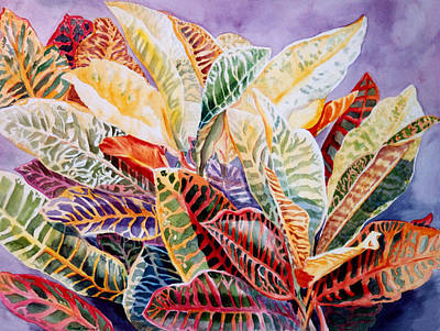 Color Patterns - Crotons Art Print