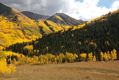 Photograph - Colorado Autumn Aspen Landscape by Cascade Colors