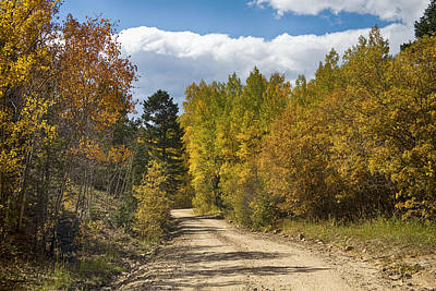 Photograph - Colorado Autumn High Elevation Rocky Mountain 4 Wheeling by James BO  Insogna
