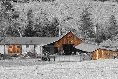 James Insogna Photograph - Colorado Barn Boulder County   by James BO  Insogna