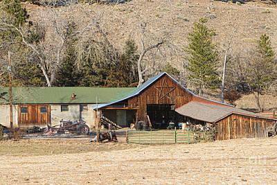 Photograph - Colorado Barn by James BO Insogna