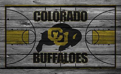Colorado State University Photograph - Colorado Buffaloes by Joe Hamilton