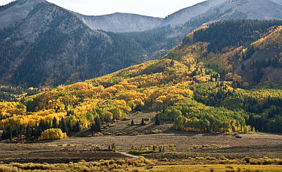 Photograph - Colorado Changing Eleven   by Eric Rundle