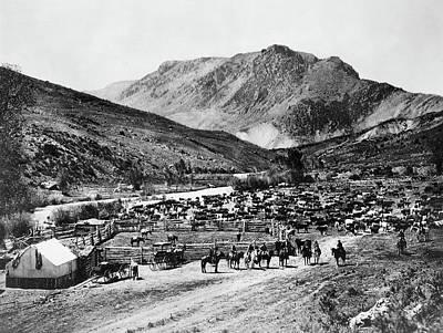 Photograph - Colorado Cimarron, C1905 by Granger