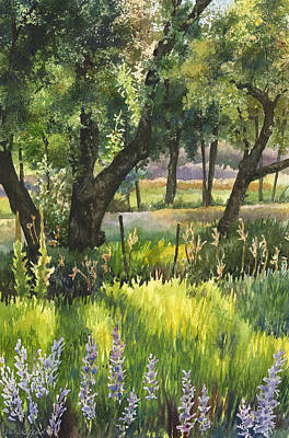Lupine Painting - Colorado Evening Shadows by Anne Gifford