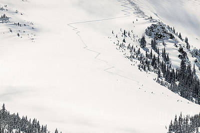 Colorado Extreme Skiing Art Print by Janice Rae Pariza