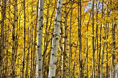 Autumn Foliage Mixed Media - Colorado Fall Aspens 7 by Angelina Vick