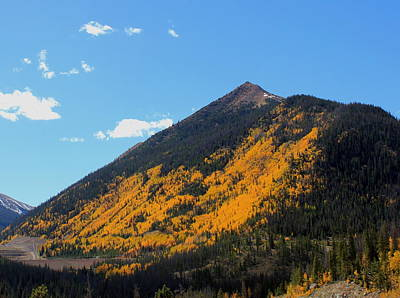 Photograph - Colorado Gold by Trent Mallett