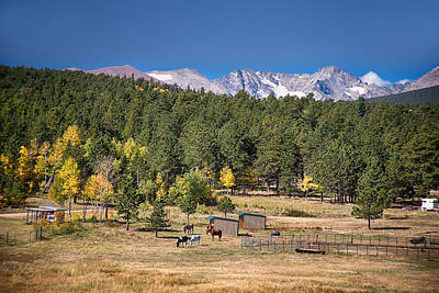 Photograph - Colorado High Country Landscape by James BO Insogna
