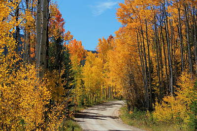 Photograph - Colorado Mountain Road by Trent Mallett