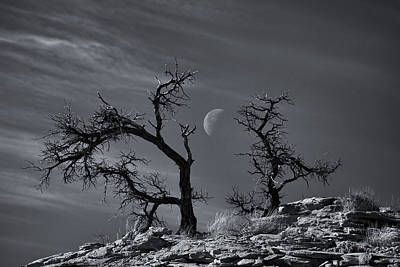Photograph - Colorado National Monument Moonrise by Darren  White