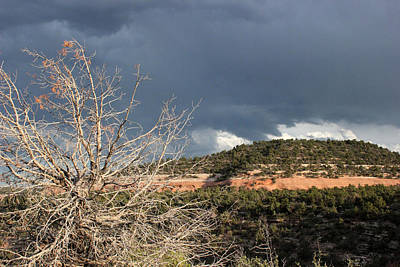 Photograph - Colorado National Monument 20 by Mary Bedy