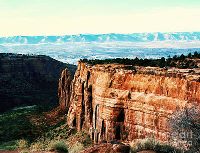 Photograph - Colorado National Monument by Polly Peacock